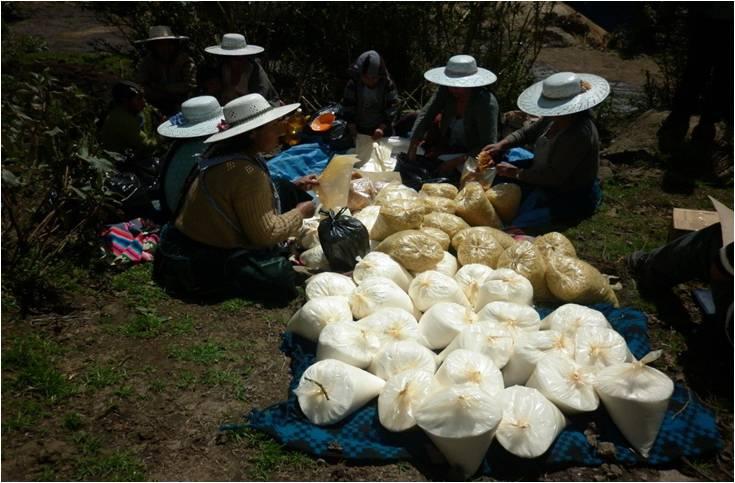 Die Gruppe der Mütter beim Verteilen der Waren im Gemeindeladen
