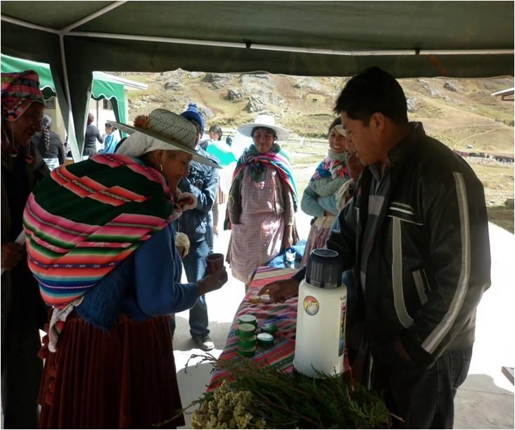 Teilnahme an der Gesundheitsmesse in Chapisirca: Verkauf von traditioneller Medizin