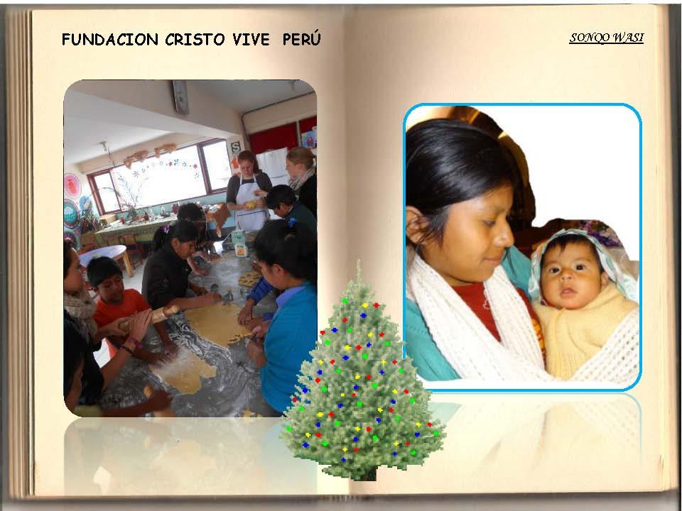 Saludos Navidad FCV Perú 2013_Seite_07