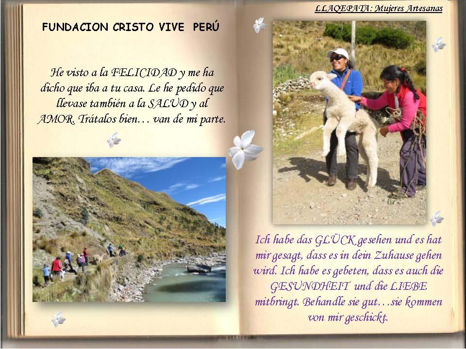 Saludos Navidad FCV Perú 2013_Seite_09