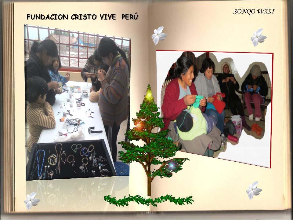 Saludos Navidad FCV Perú 2013_Seite_12