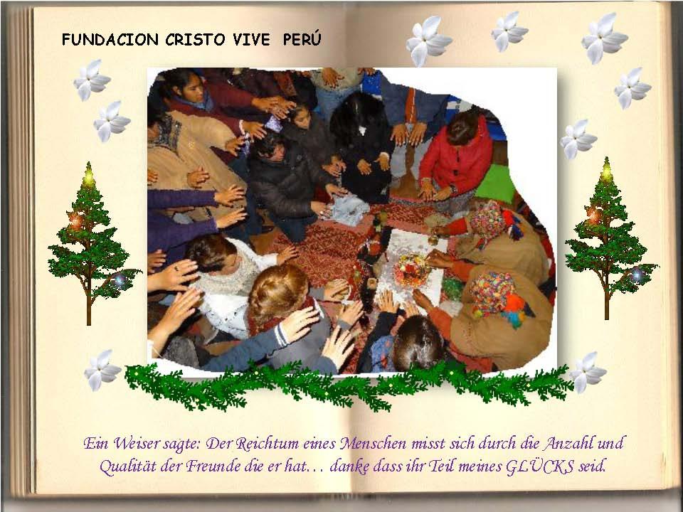 Saludos Navidad FCV Perú 2013_Seite_13