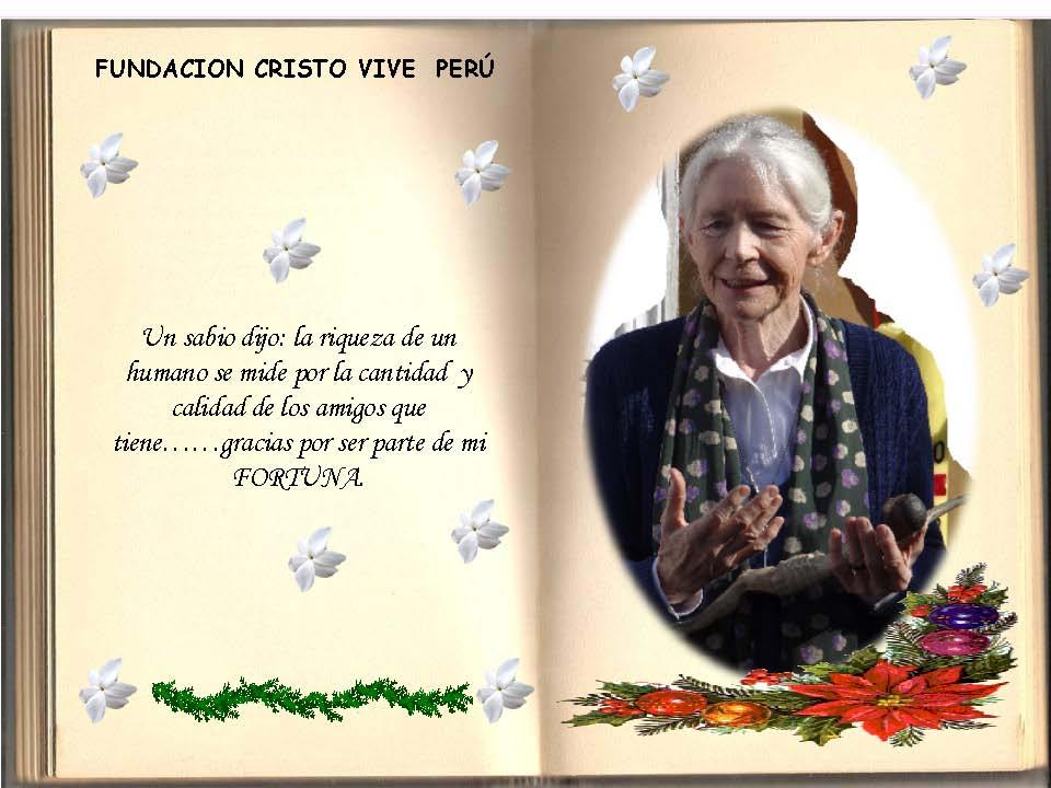 Saludos Navidad FCV Perú 2013_Seite_14