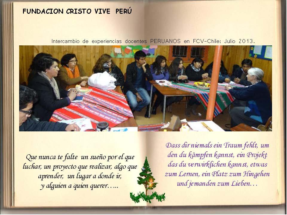 Saludos Navidad FCV Perú 2013_Seite_15