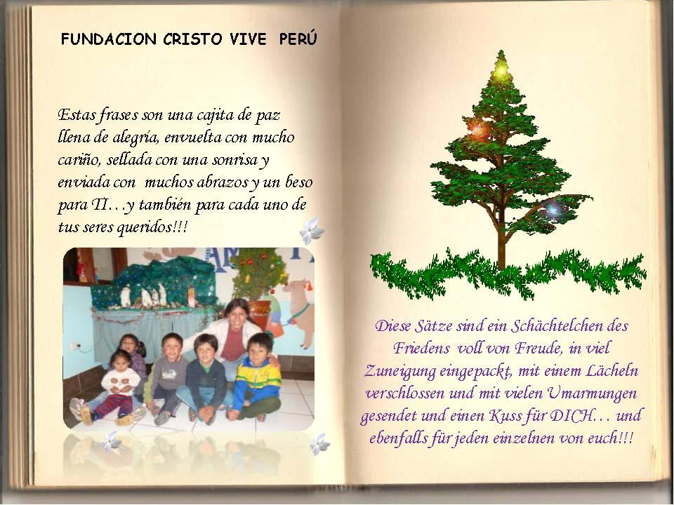 Saludos Navidad FCV Perú 2013_Seite_17